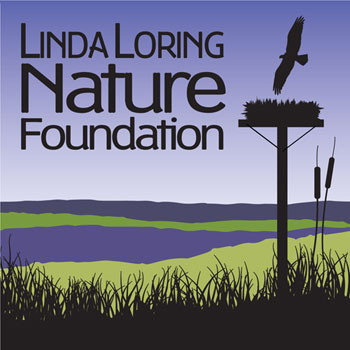 Linda Loring Nature Foundation